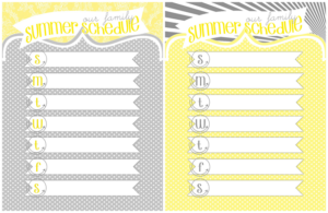 Our Family Summer Schedule4