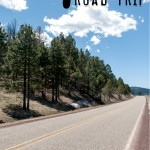 7 Tips For A Drama FREE Road Trip