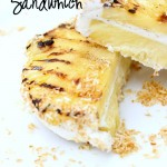 These Tropical Ice Cream Sandwiches are what dreams are made of!! Ice Cream + Grilled Pineapple+ Toasted Coconut = PURE perfection!