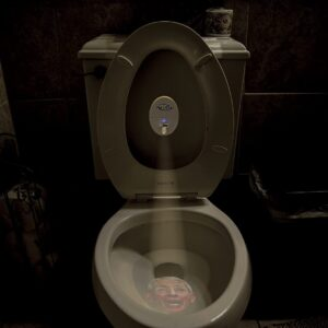 Night Light With democrats' faces to pee on