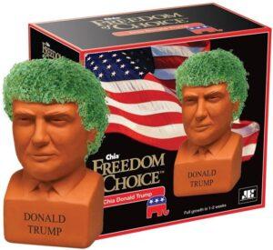 Donald Trump Chia Seed Head